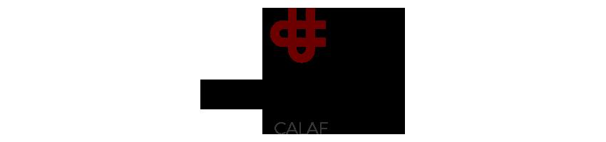 El_Casino_de_Calaf